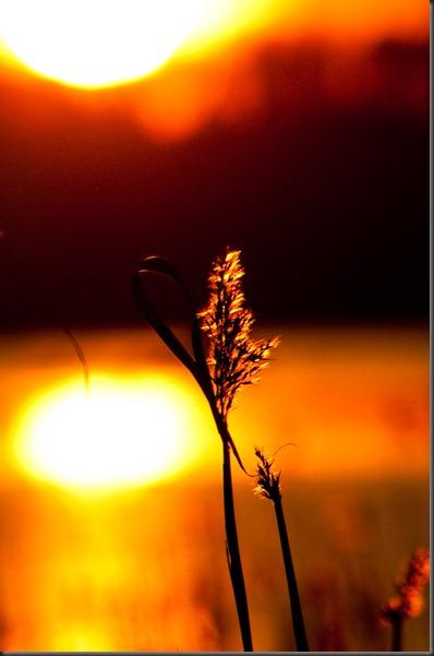 sunset_kaisla