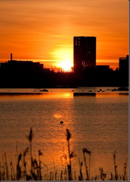 sunset_konebuilding_kaislat