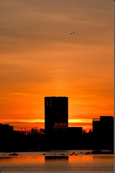 sunset_konebuilding_linnut