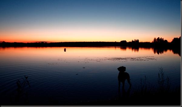 tarto_sunset_chili