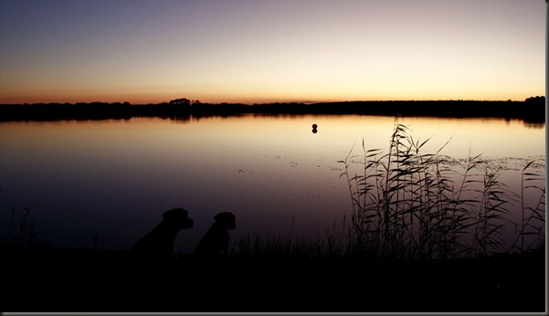 tarto_sunset_chiliunna