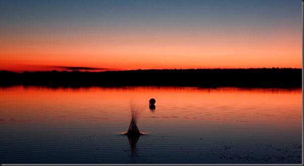 tarto_sunset_kivi