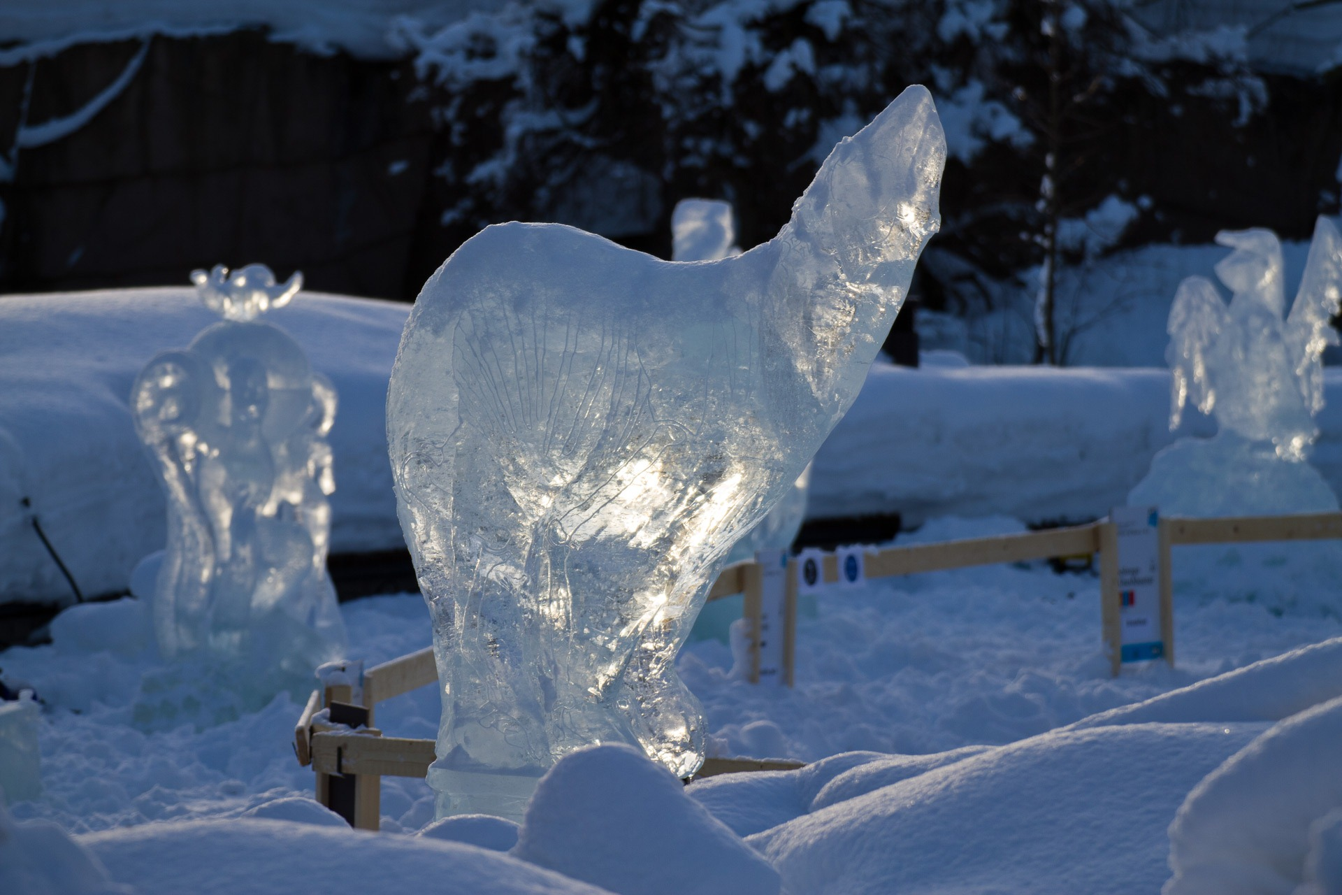 Ice sculptures | Photography blog by Sampsa Sulonen
